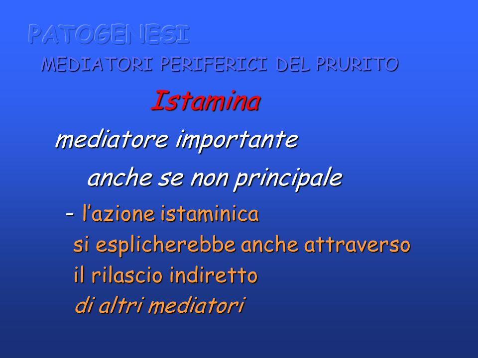 Istamina Istamina mediatore importante mediatore importante anche se non principale anche se non principale - lazione istaminica - lazione istaminica