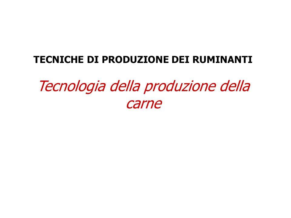 TECNICHE DI PRODUZIONE DEI RUMINANTI Tecnologia della produzione della carne