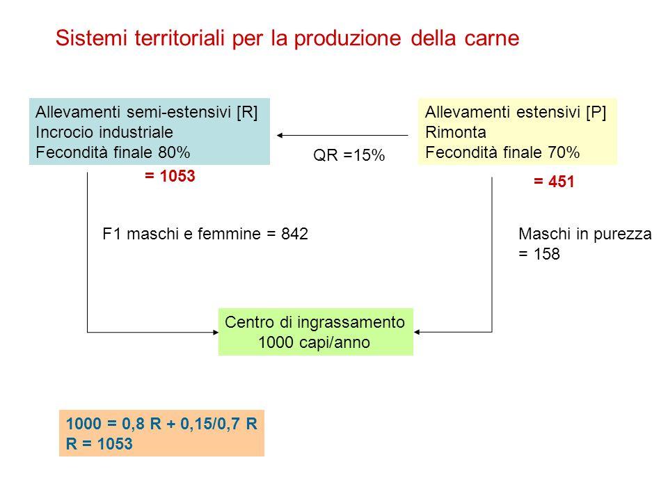 Sistemi territoriali per la produzione della carne Allevamenti semi-estensivi [R] Incrocio industriale Fecondità finale 80% Allevamenti estensivi [P] Rimonta Fecondità finale 70% Centro di ingrassamento 1000 capi/anno QR =15% Maschi in purezza = 158 F1 maschi e femmine = 842 1000 = 0,8 R + 0,15/0,7 R R = 1053 = 451 = 1053