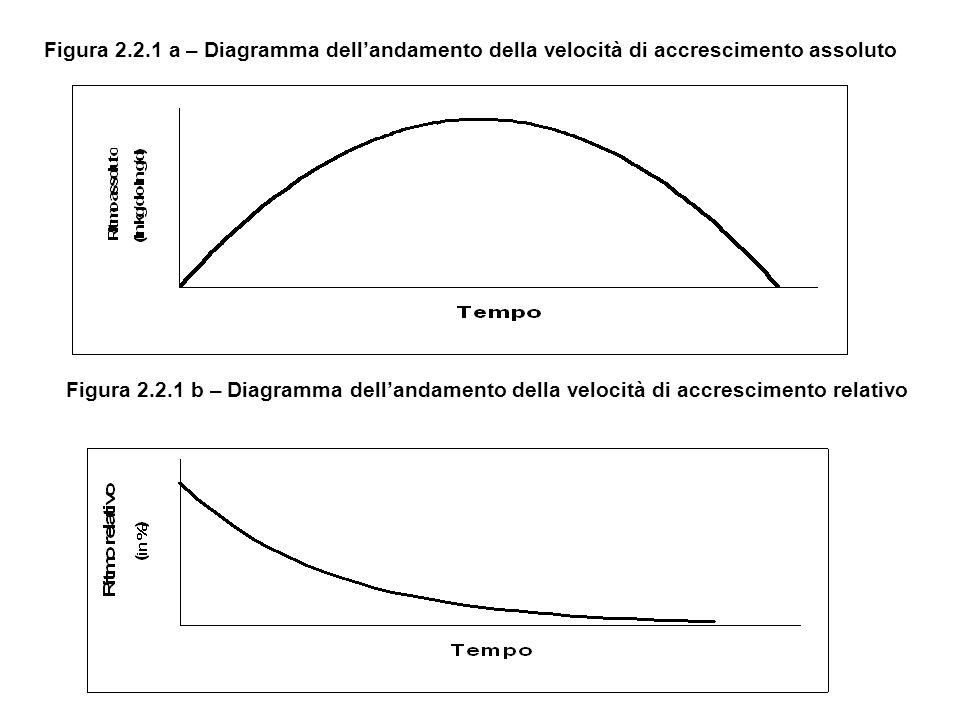 Figura 2.2.1 a – Diagramma dellandamento della velocità di accrescimento assoluto Figura 2.2.1 b – Diagramma dellandamento della velocità di accrescimento relativo