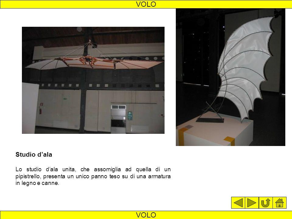 Macchina volante La macchina volante è uno dei progetti più noti di Leonardo. Il pilota si sdraiava sul pianale al quale era legato con cinghie; i pie