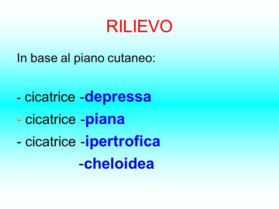 RILIEVO In base al piano cutaneo: - cicatrice - depressa - cicatrice - piana - cicatrice - ipertrofica -cheloidea