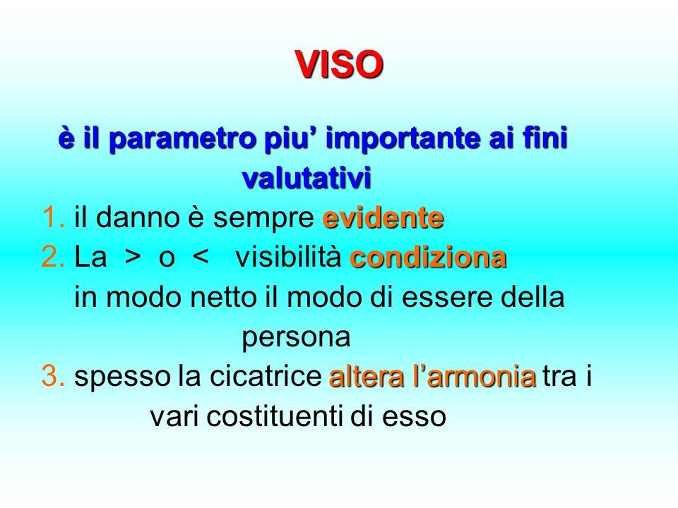 VISO è il parametro piu importante ai fini valutativi valutativi evidente 1. il danno è sempre evidente condiziona 2. La > o < visibilità condiziona i