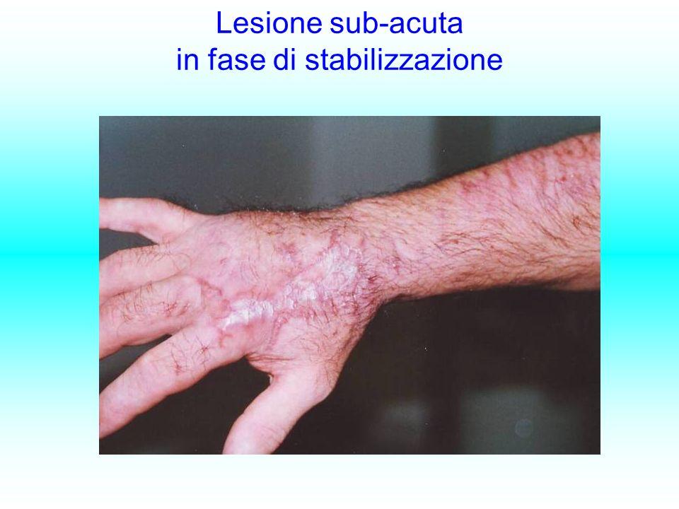 Lesione sub-acuta in fase di stabilizzazione
