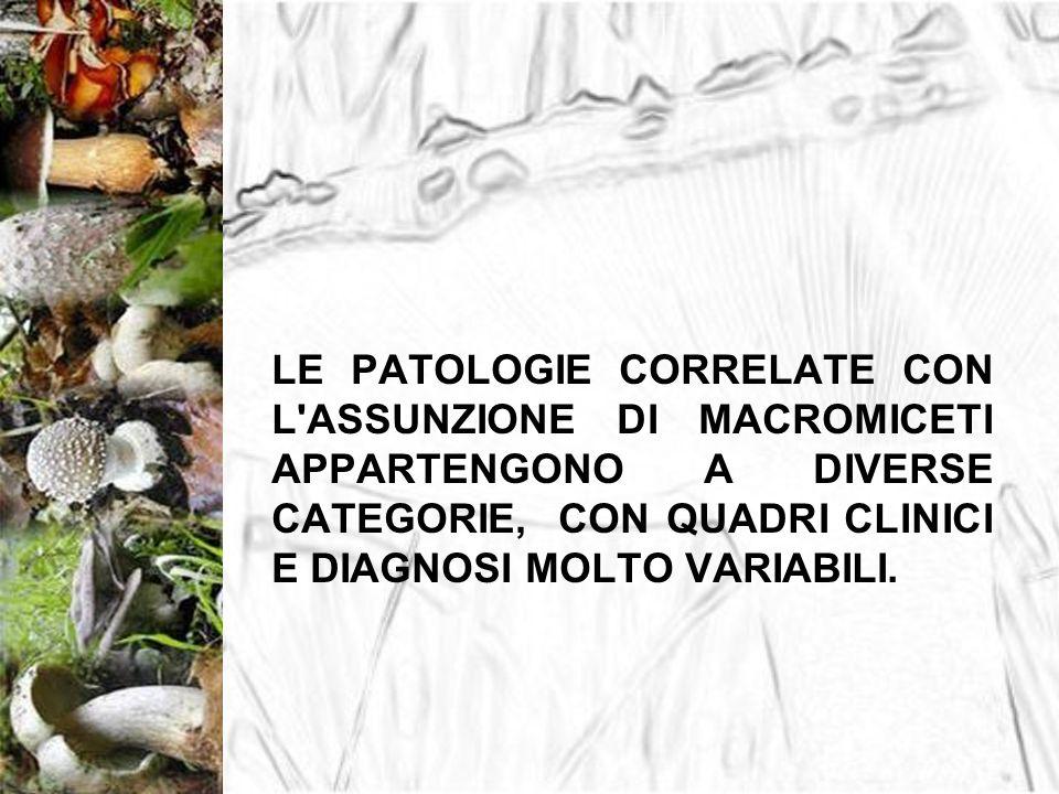 PRINCIPALI SINDROMI FALLOIDEA ORELLANICA GIROMITRICA PAXILLICA GASTROINTESTINALE COPRINICA PANTERINICA MUSCARINICA PSICOTROPA STATISTICAMENTE IN ITALIA LA SINDROME PIU DIFFUSA, TRA QUELLE POTENZIALMENTE MORTALI E LA FALLOIDEA