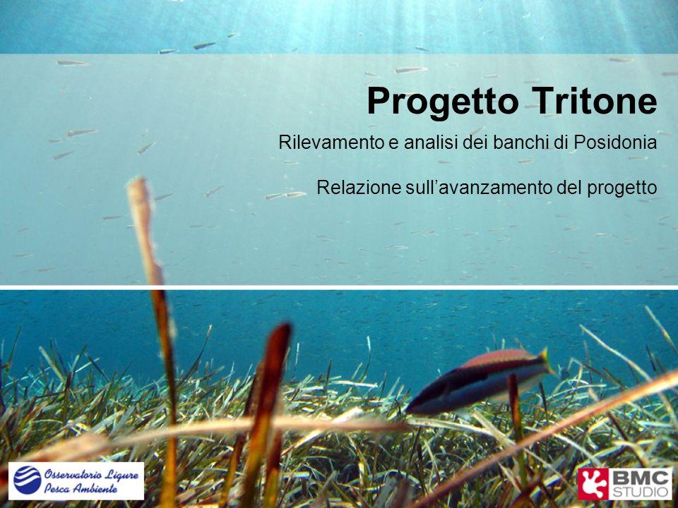Sviluppo 3.automazione analisi biocenosi (P. Oceanica).