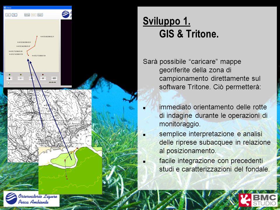 Sviluppo 1. GIS & Tritone. Sarà possibile caricare mappe georiferite della zona di campionamento direttamente sul software Tritone. Ciò permetterà: im
