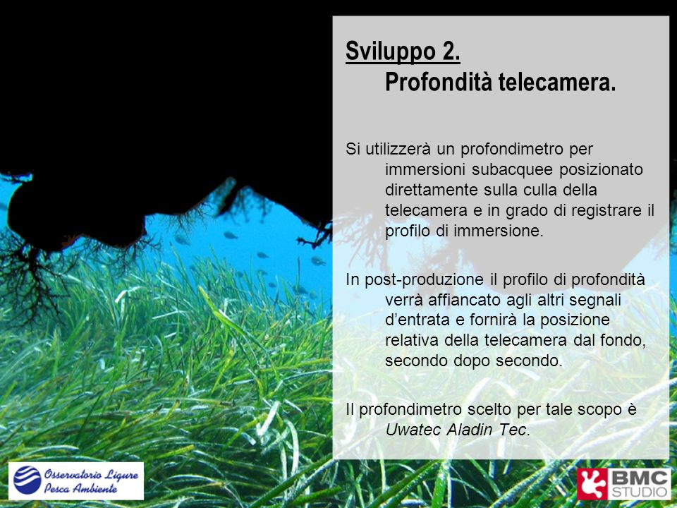 Sviluppo 2. Profondità telecamera. Si utilizzerà un profondimetro per immersioni subacquee posizionato direttamente sulla culla della telecamera e in