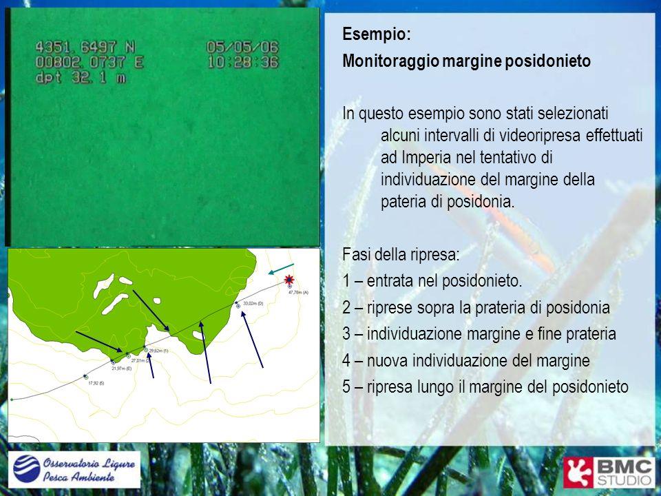 Esempio: Monitoraggio margine posidonieto In questo esempio sono stati selezionati alcuni intervalli di videoripresa effettuati ad Imperia nel tentati