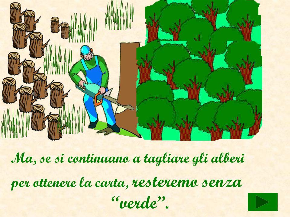 Con il legno di un albero… …si ottengono tantissimi fogli.