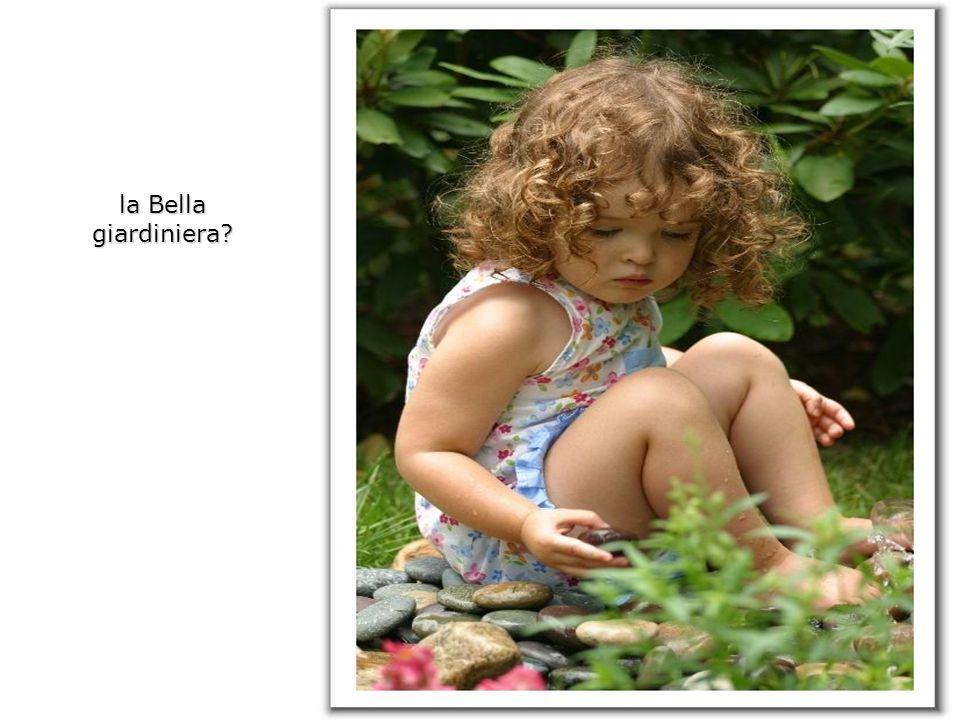 la Bella giardiniera?