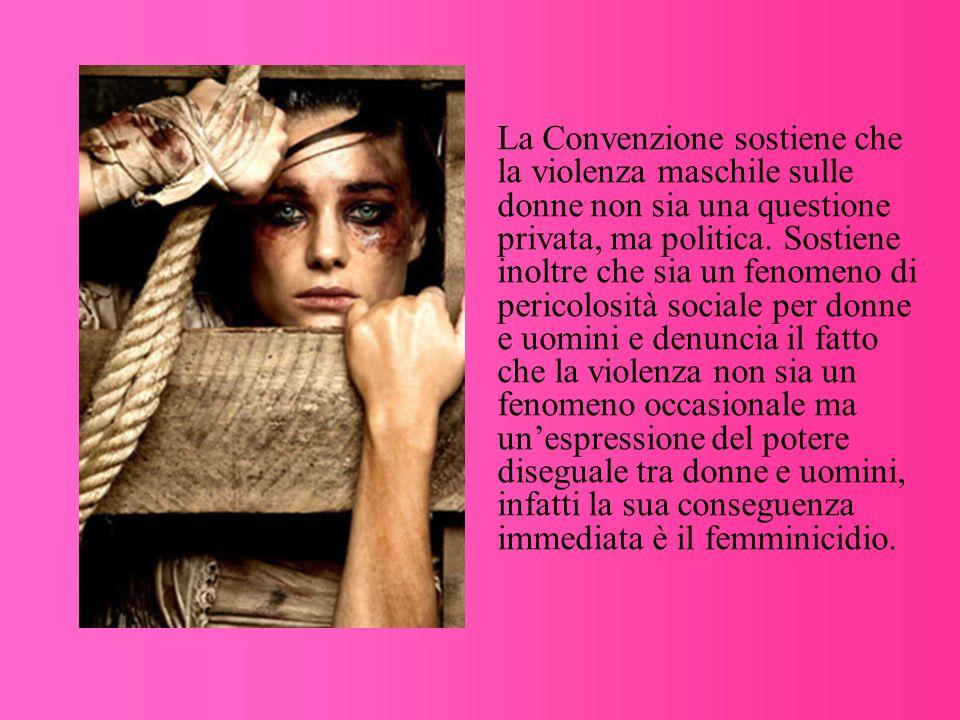 La Convenzione sostiene che la violenza maschile sulle donne non sia una questione privata, ma politica. Sostiene inoltre che sia un fenomeno di peric