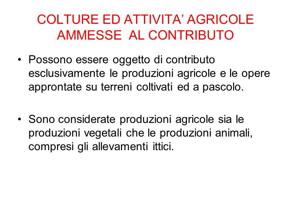 COLTURE ED ATTIVITA AGRICOLE AMMESSE AL CONTRIBUTO Possono essere oggetto di contributo esclusivamente le produzioni agricole e le opere approntate su terreni coltivati ed a pascolo.