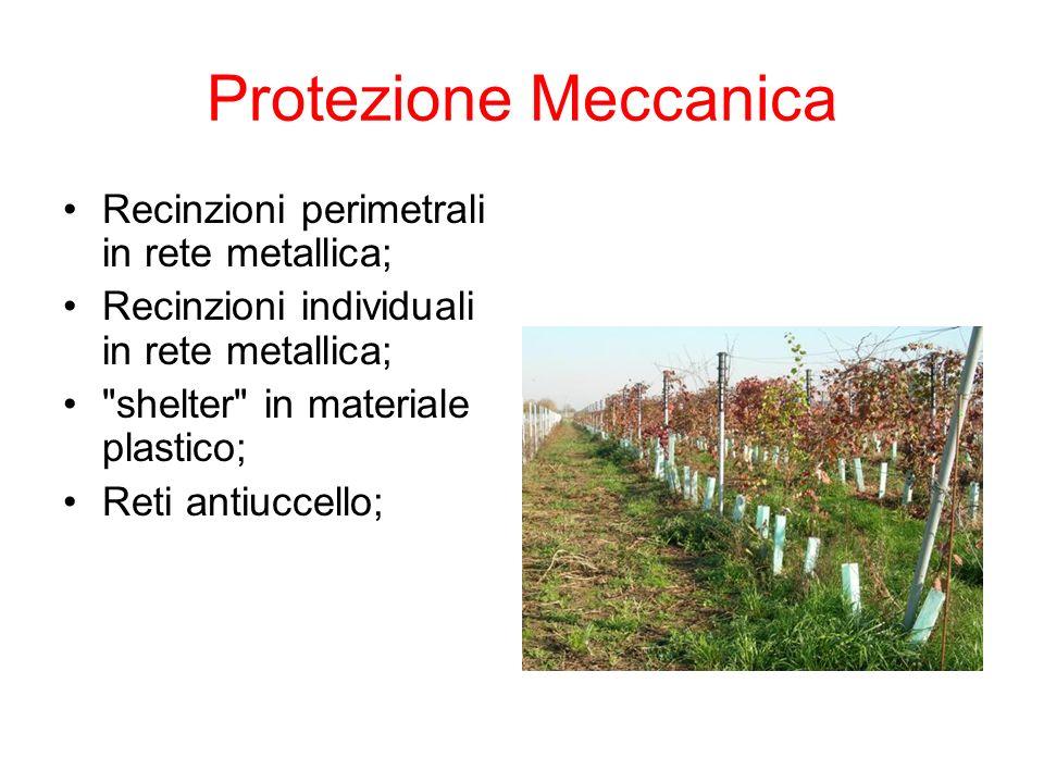 Protezione Meccanica Recinzioni perimetrali in rete metallica; Recinzioni individuali in rete metallica; shelter in materiale plastico; Reti antiuccello;
