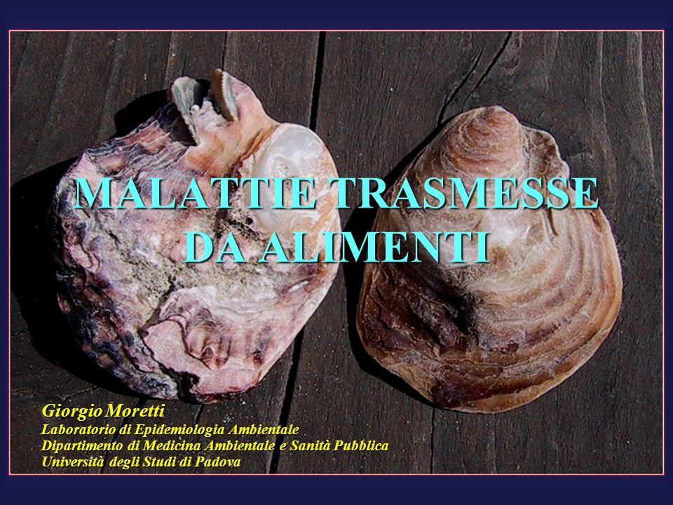MALATTIE TRASMESSE DA ALIMENTI Giorgio Moretti Laboratorio di Epidemiologia Ambientale Dipartimento di Medicina Ambientale e Sanità Pubblica Universit