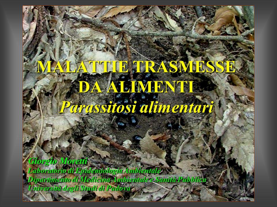 MALATTIE TRASMESSE DA ALIMENTI Parassitosi alimentari Giorgio Moretti Laboratorio di Epidemiologia Ambientale Dipartimento di Medicina Ambientale e Sa
