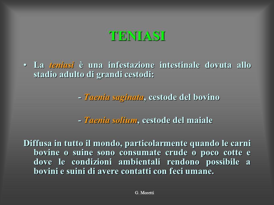 TENIASI La teniasi è una infestazione intestinale dovuta allo stadio adulto di grandi cestodi:La teniasi è una infestazione intestinale dovuta allo st