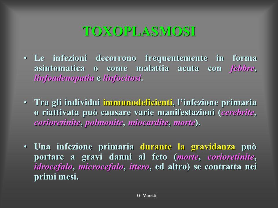 TOXOPLASMOSI Le infezioni decorrono frequentemente in forma asintomatica o come malattia acuta con febbre, linfoadenopatia e linfocitosi.Le infezioni