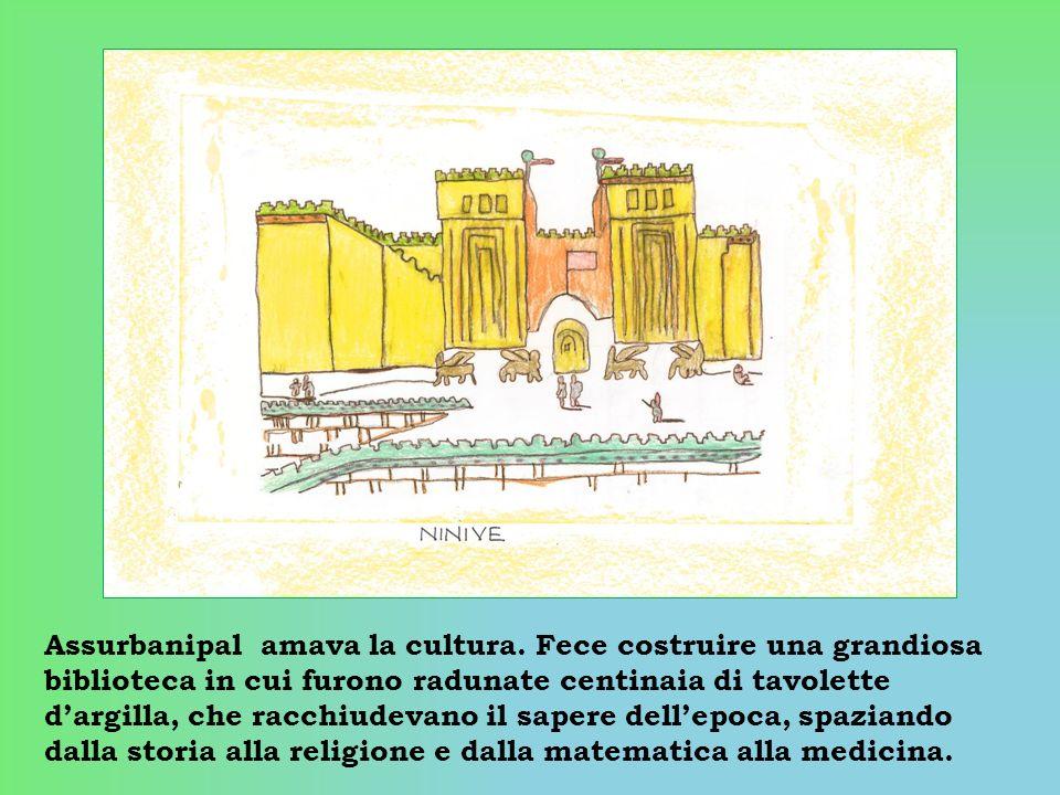 Assurbanipal amava la cultura. Fece costruire una grandiosa biblioteca in cui furono radunate centinaia di tavolette dargilla, che racchiudevano il sa