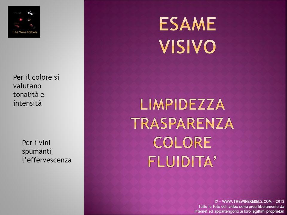 Per il colore si valutano tonalità e intensità © - WWW.THEWINEREBELS.COM – 2013 Tutte le foto ed i video sono presi liberamente da internet ed appartengono ai loro legittimi proprietari Per i vini spumanti leffervescenza