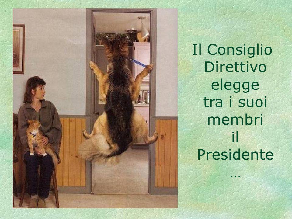 Il Consiglio Direttivo elegge tra i suoi membri il Presidente …