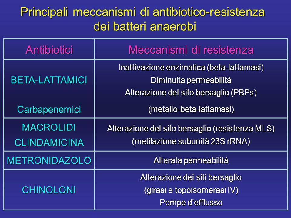 Antibiotici Meccanismi di resistenza BETA-LATTAMICI Inattivazione enzimatica (beta-lattamasi) Diminuita permeabilità Alterazione del sito bersaglio (PBPs) Carbapenemici(metallo-beta-lattamasi) MACROLIDICLINDAMICINA Alterazione del sito bersaglio (resistenza MLS) (metilazione subunità 23S rRNA) METRONIDAZOLO Alterata permeabilità CHINOLONI Alterazione dei siti bersaglio (girasi e topoisomerasi IV) Pompe defflusso Principali meccanismi di antibiotico-resistenza dei batteri anaerobi