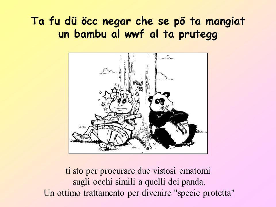 Ta fu dü öcc negar che se pö ta mangiat un bambu al wwf al ta prutegg ti sto per procurare due vistosi ematomi sugli occhi simili a quelli dei panda.