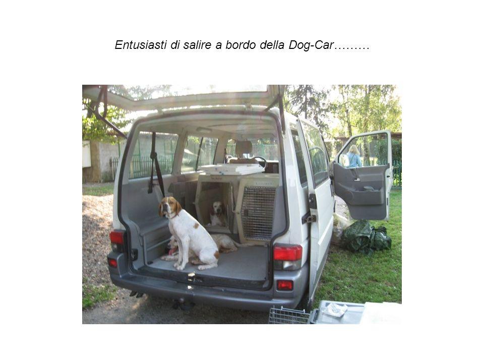 Entusiasti di salire a bordo della Dog-Car………