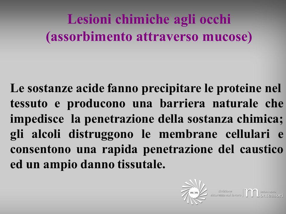 Lesioni chimiche agli occhi (assorbimento attraverso mucose) Le sostanze acide fanno precipitare le proteine nel tessuto e producono una barriera natu