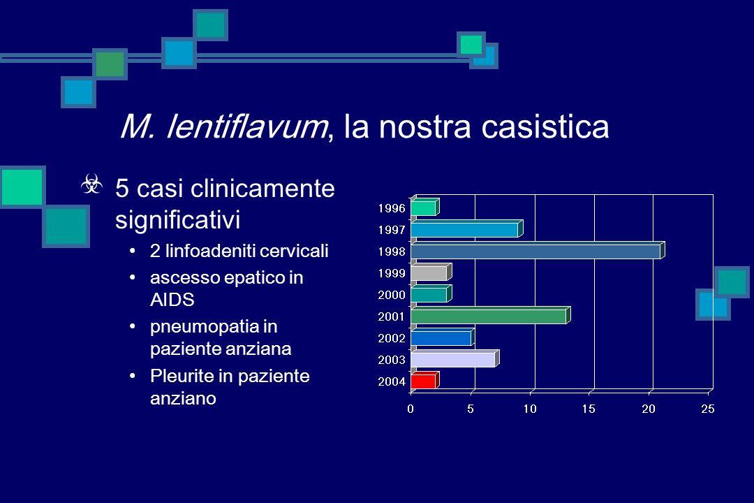 M. lentiflavum, nella letteratura 4 casi di linfoadenite 1 caso di spondilodiscite 1 infezione polmonare 1 infezione disseminata in AIDS 1 infezione d