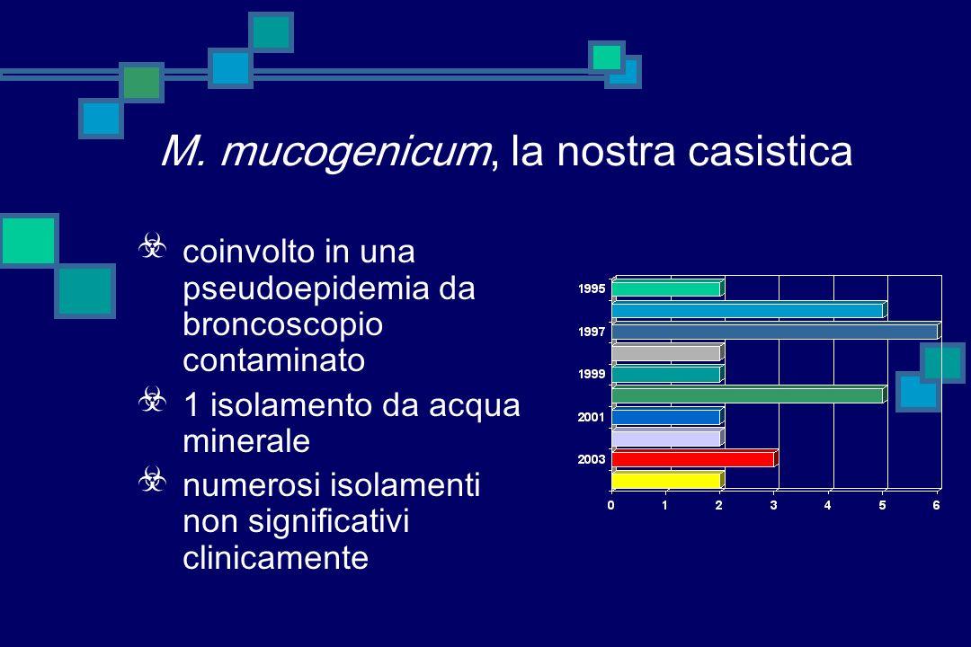 Mycobacterium mucogenicum specie a crescita rapida, inclusa, fino al 1993, nel gruppo MCLO sensibile alla cefalotina responsabile di infezioni post tr
