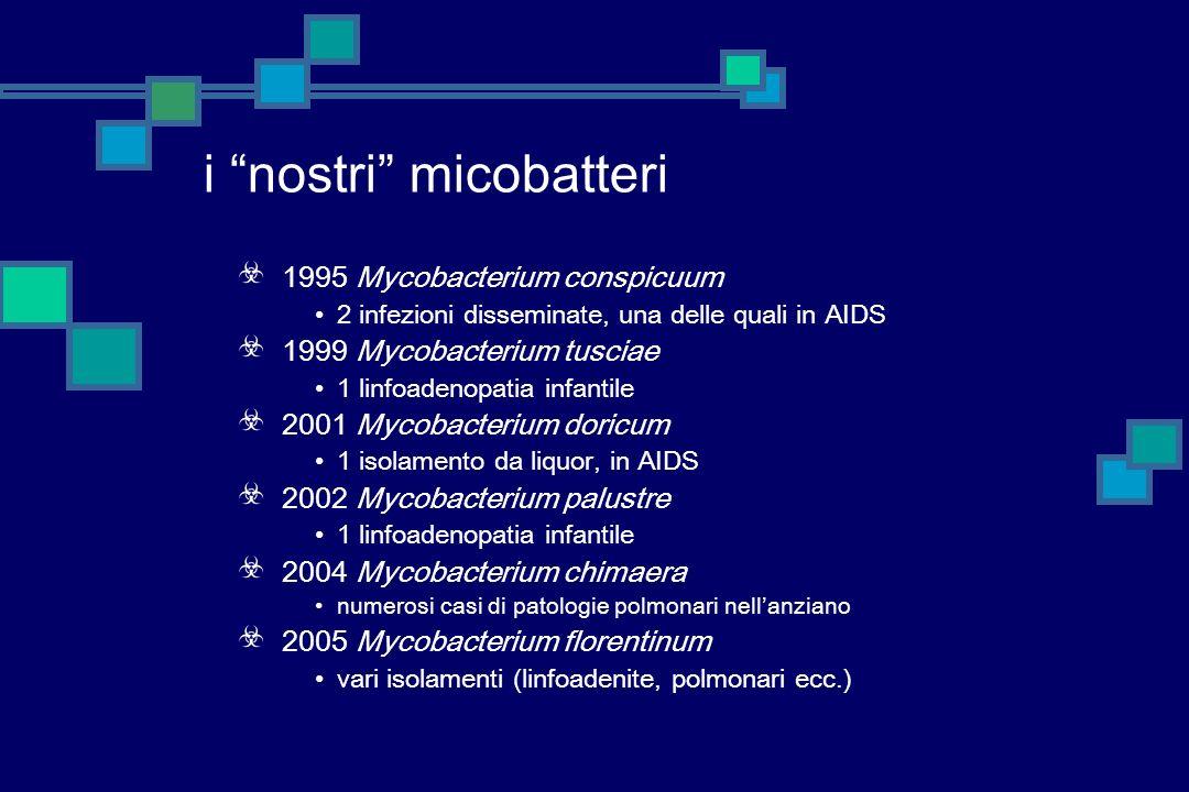 Mycobacterium bohemicum isolato da escreato (non significativo) e da una infezione disseminata in un paziente anziano isolato da noi in 3 casi di linf