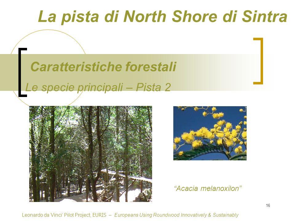 16 Le specie principali – Pista 2 Caratteristiche forestali Leonardo da Vinci Pilot Project, EURIS – Europeans Using Roundwood Innovatively & Sustainably Acacia melanoxilon La pista di North Shore di Sintra