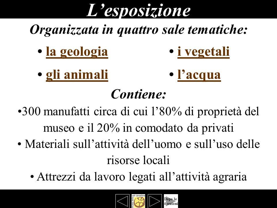 Lesposizione bbbb Organizzata in quattro sale tematiche: la geologia i vegetalila geologiai vegetali gli animali lacquagli animalilacqua Contiene: 300