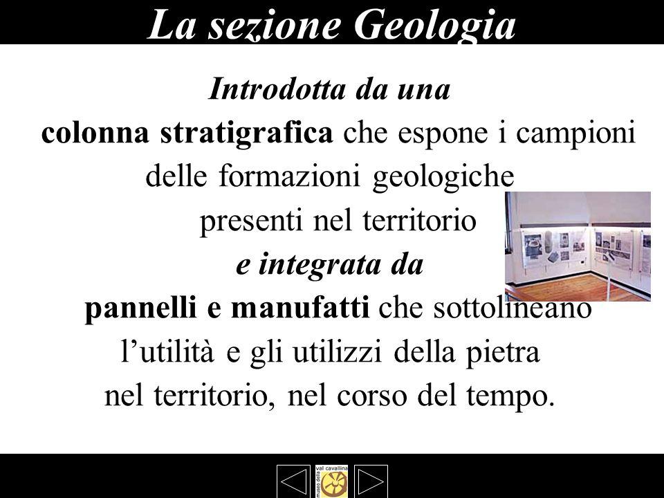 La sezione Geologia bbbbb Introdotta da una colonna stratigrafica che espone i campioni delle formazioni geologiche presenti nel territorio e integrat