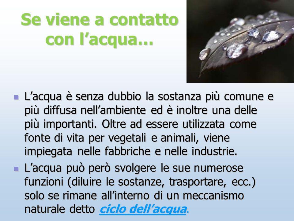 Se viene a contatto con lacqua… Lacqua è senza dubbio la sostanza più comune e più diffusa nellambiente ed è inoltre una delle più importanti. Oltre a