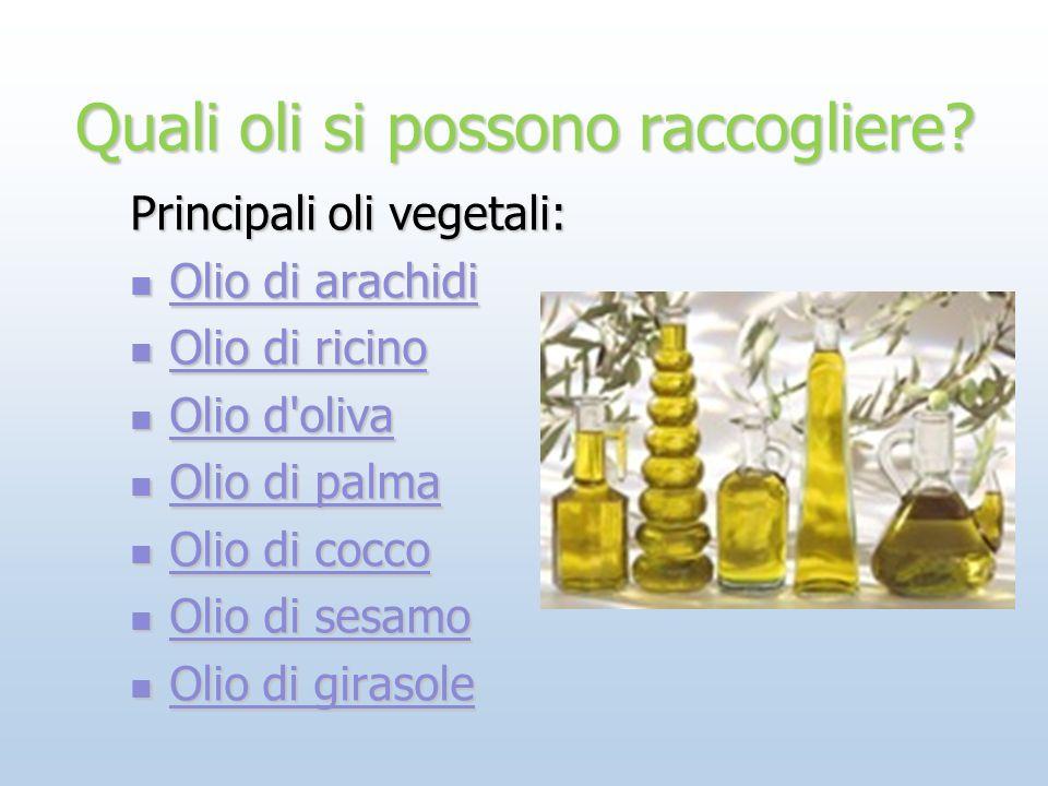 Quali oli si possono raccogliere? Principali oli vegetali: Olio di arachidi Olio di arachidi Olio di arachidi Olio di arachidi Olio di ricino Olio di