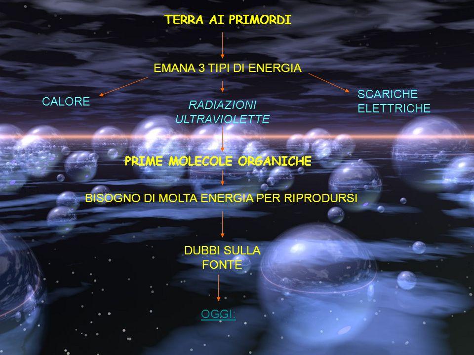 TERRA AI PRIMORDI EMANA 3 TIPI DI ENERGIA RADIAZIONI ULTRAVIOLETTE SCARICHE ELETTRICHE CALORE PRIME MOLECOLE ORGANICHE BISOGNO DI MOLTA ENERGIA PER RI