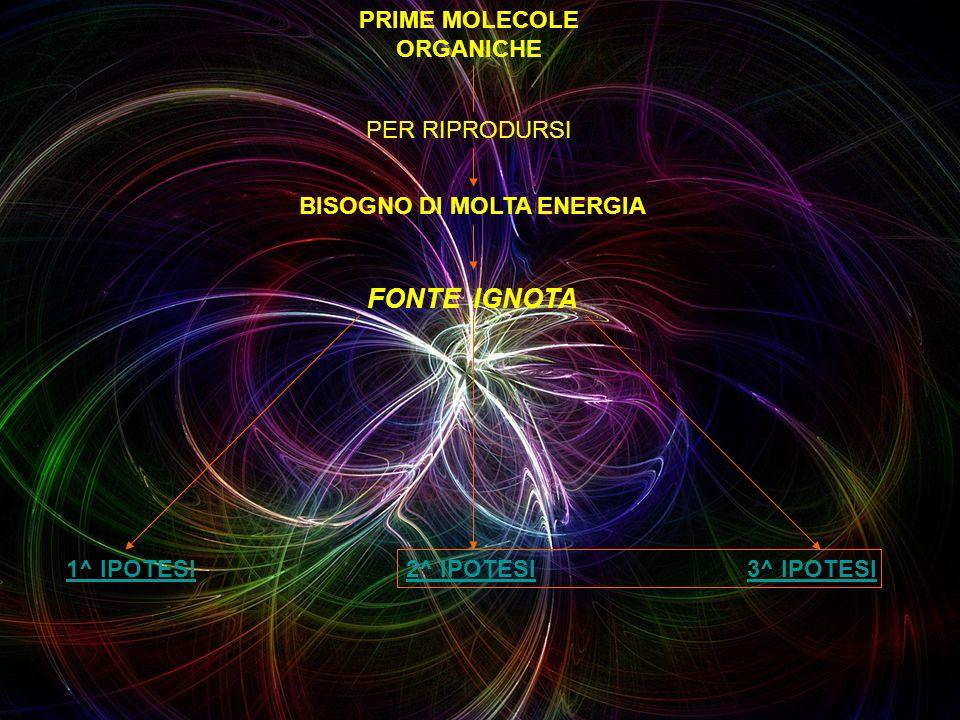 PRIME MOLECOLE ORGANICHE PER RIPRODURSI BISOGNO DI MOLTA ENERGIA FONTE IGNOTA 1^ IPOTESI2^ IPOTESI3^ IPOTESI