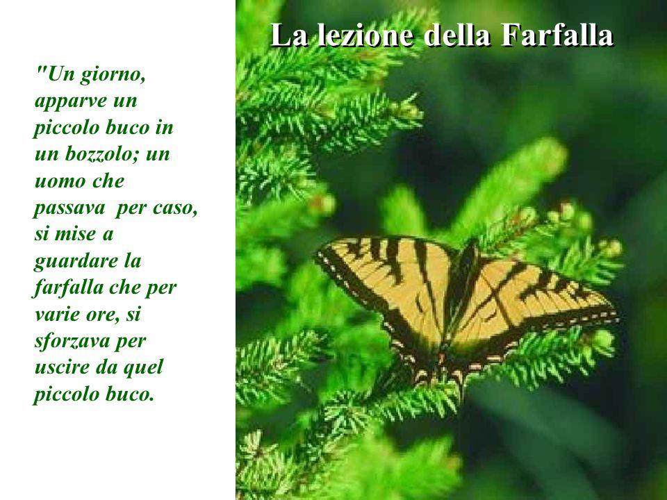 La lezione della Farfalla Un giorno, apparve un piccolo buco in un bozzolo; un uomo che passava per caso, si mise a guardare la farfalla che per varie ore, si sforzava per uscire da quel piccolo buco.