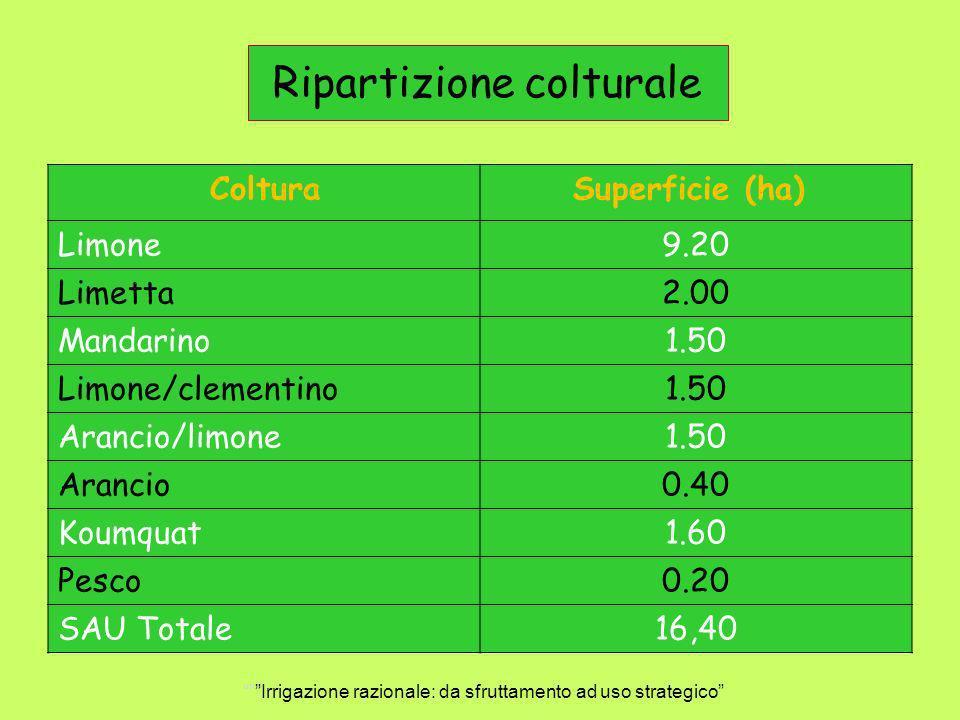 Ripartizione colturale Coltura Superficie (ha) Limone9.20 Limetta2.00 Mandarino1.50 Limone/clementino1.50 Arancio/limone1.50 Arancio0.40 Koumquat1.60