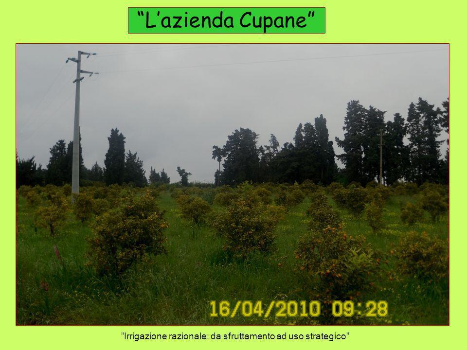 Lazienda Cupane Irrigazione razionale: da sfruttamento ad uso strategico