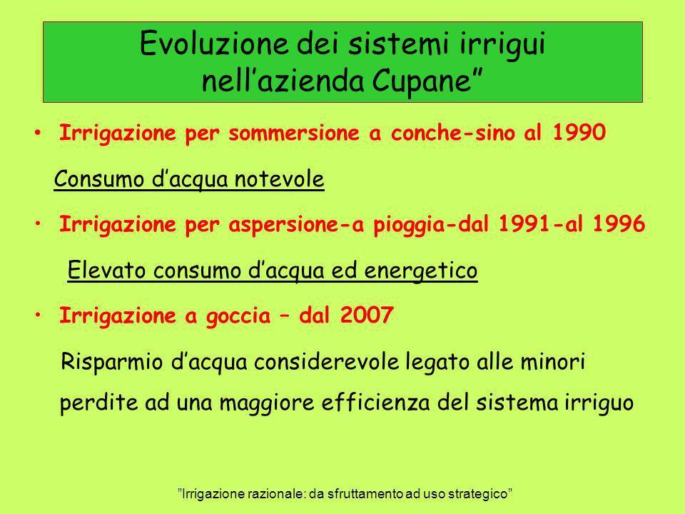 Evoluzione dei sistemi irrigui nellazienda Cupane Irrigazione razionale: da sfruttamento ad uso strategico Irrigazione per sommersione a conche-sino a