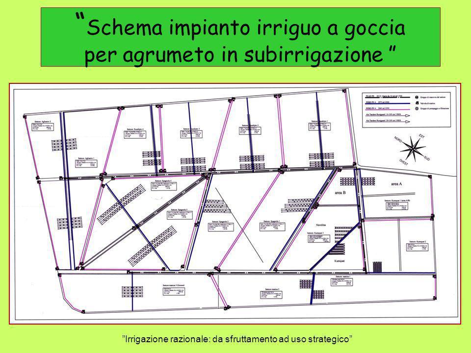 Individuazione dellazienda su cartografia Irrigazione razionale: da sfruttamento ad uso strategico