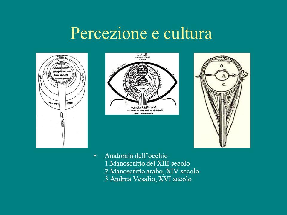 Percezione e cultura Anatomia dellocchio 1.Manoscritto del XIII secolo 2 Manoscritto arabo, XIV secolo 3 Andrea Vesalio, XVI secolo