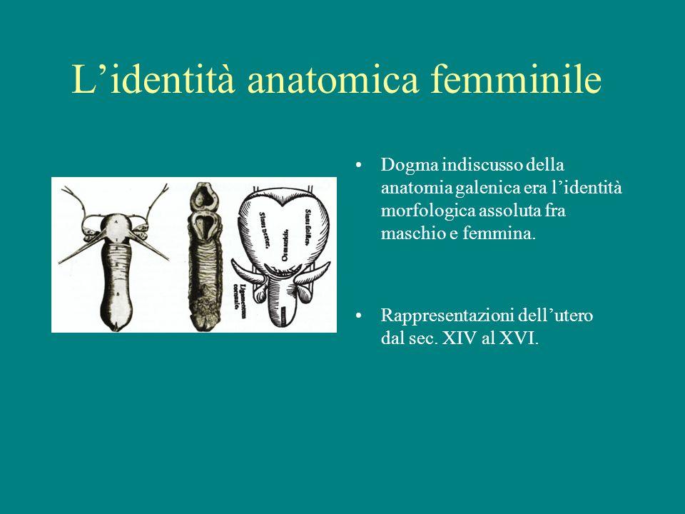 Lidentità anatomica femminile Dogma indiscusso della anatomia galenica era lidentità morfologica assoluta fra maschio e femmina. Rappresentazioni dell