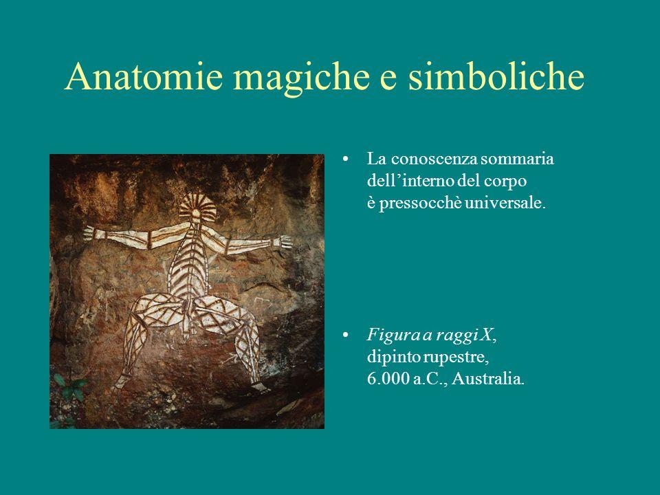 Anatomie magiche e simboliche La conoscenza sommaria dellinterno del corpo è pressocchè universale. Figura a raggi X, dipinto rupestre, 6.000 a.C., Au