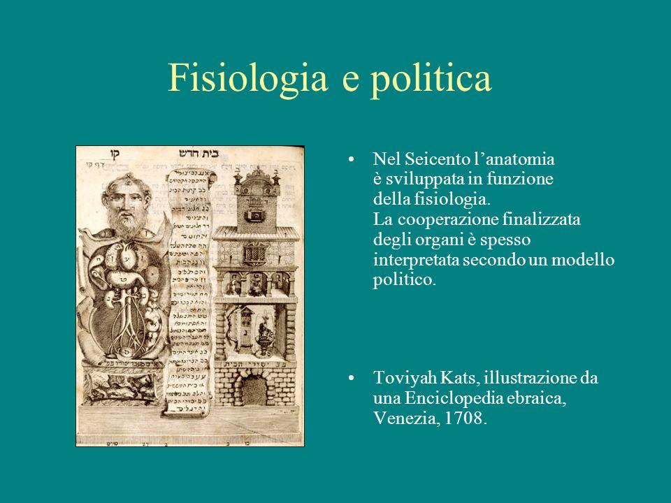 Fisiologia e politica Nel Seicento lanatomia è sviluppata in funzione della fisiologia. La cooperazione finalizzata degli organi è spesso interpretata