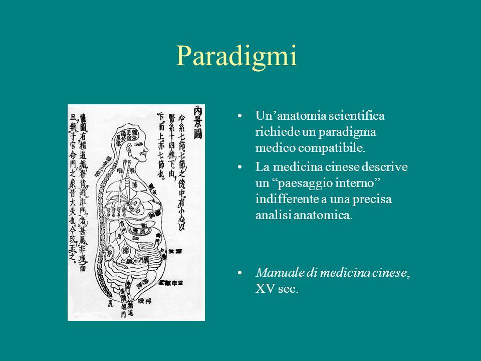 Paradigmi Unanatomia scientifica richiede un paradigma medico compatibile. La medicina cinese descrive un paesaggio interno indifferente a una precisa