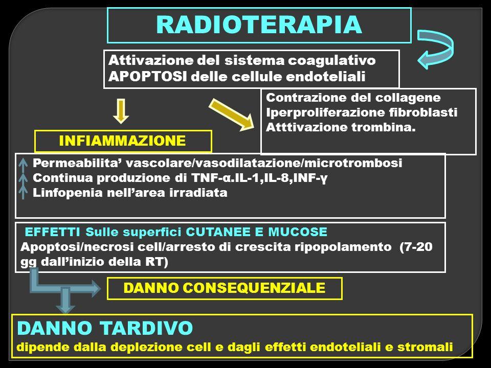 RADIOTERAPIA Attivazione del sistema coagulativo APOPTOSI delle cellule endoteliali Contrazione del collagene Iperproliferazione fibroblasti Atttivazi